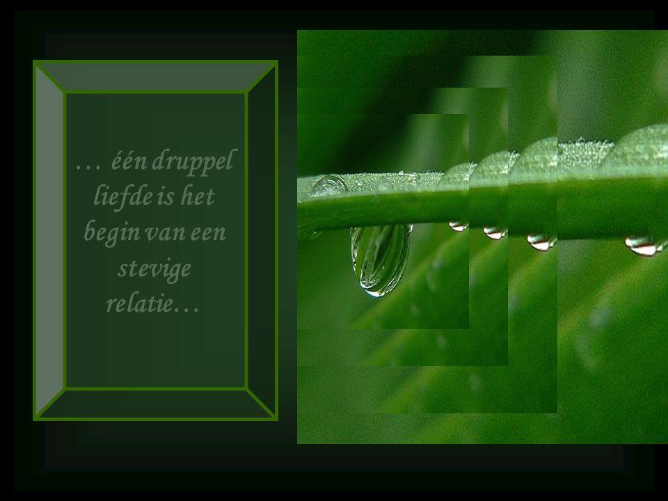 … één druppel liefde is het begin van een stevige relatie…