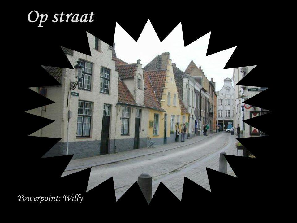 Powerpoint: Willy Op straat
