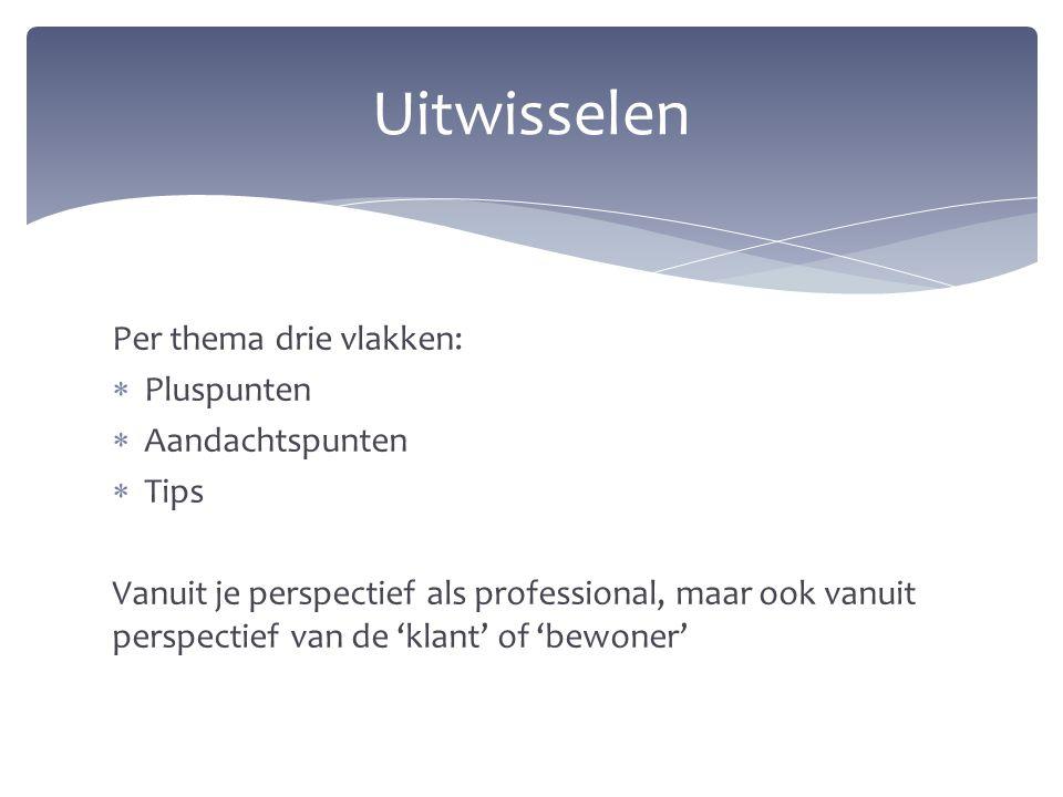 Per thema drie vlakken:  Pluspunten  Aandachtspunten  Tips Vanuit je perspectief als professional, maar ook vanuit perspectief van de 'klant' of 'b