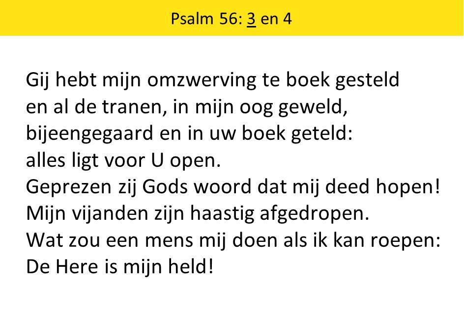 Psalm 56: 3 en 4 Gij hebt mijn omzwerving te boek gesteld en al de tranen, in mijn oog geweld, bijeengegaard en in uw boek geteld: alles ligt voor U open.