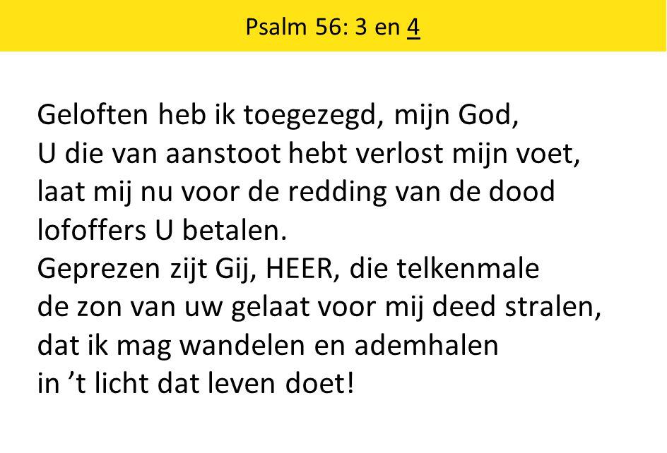 Psalm 56: 3 en 4 Geloften heb ik toegezegd, mijn God, U die van aanstoot hebt verlost mijn voet, laat mij nu voor de redding van de dood lofoffers U betalen.