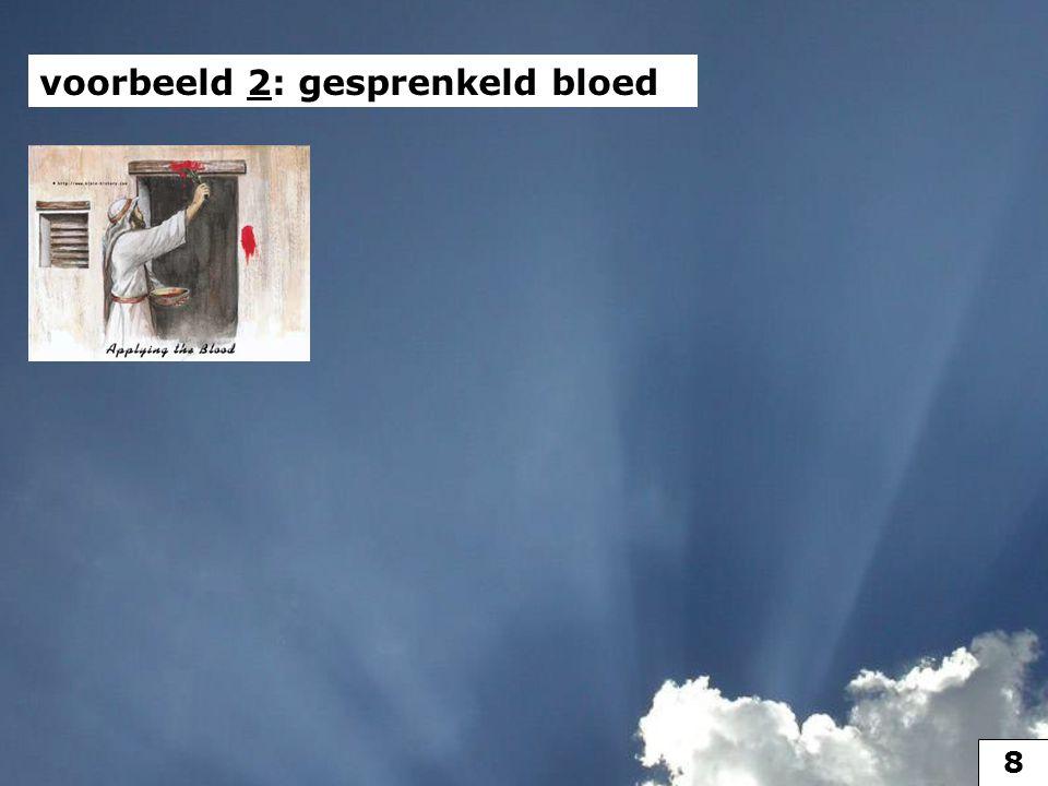 voorbeeld 2 voorbeeld 2: gesprenkeld bloed 9