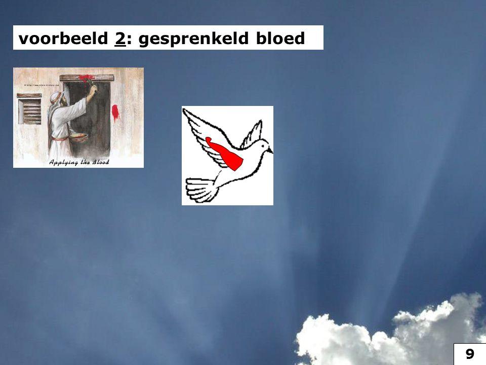 voorbeeld 2 voorbeeld 2: gesprenkeld bloed 10