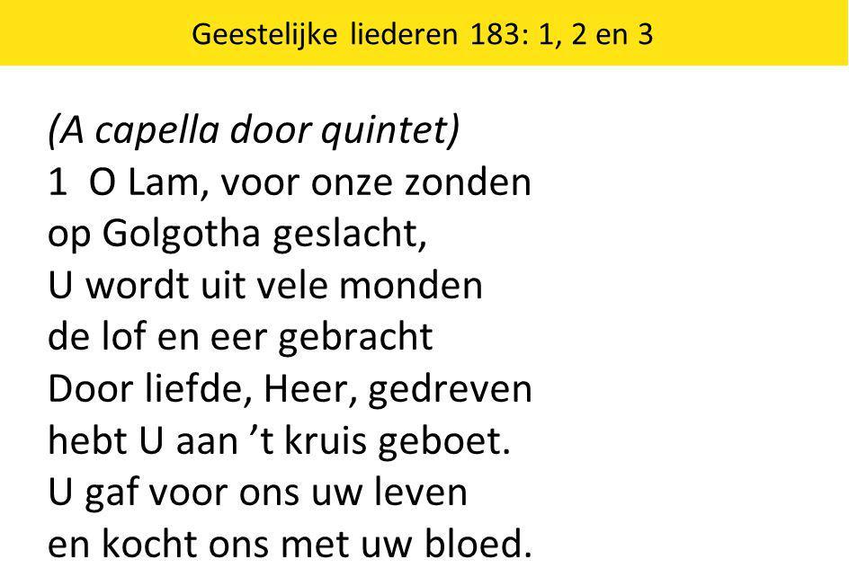 (A capella door quintet) 1 O Lam, voor onze zonden op Golgotha geslacht, U wordt uit vele monden de lof en eer gebracht Door liefde, Heer, gedreven hebt U aan 't kruis geboet.