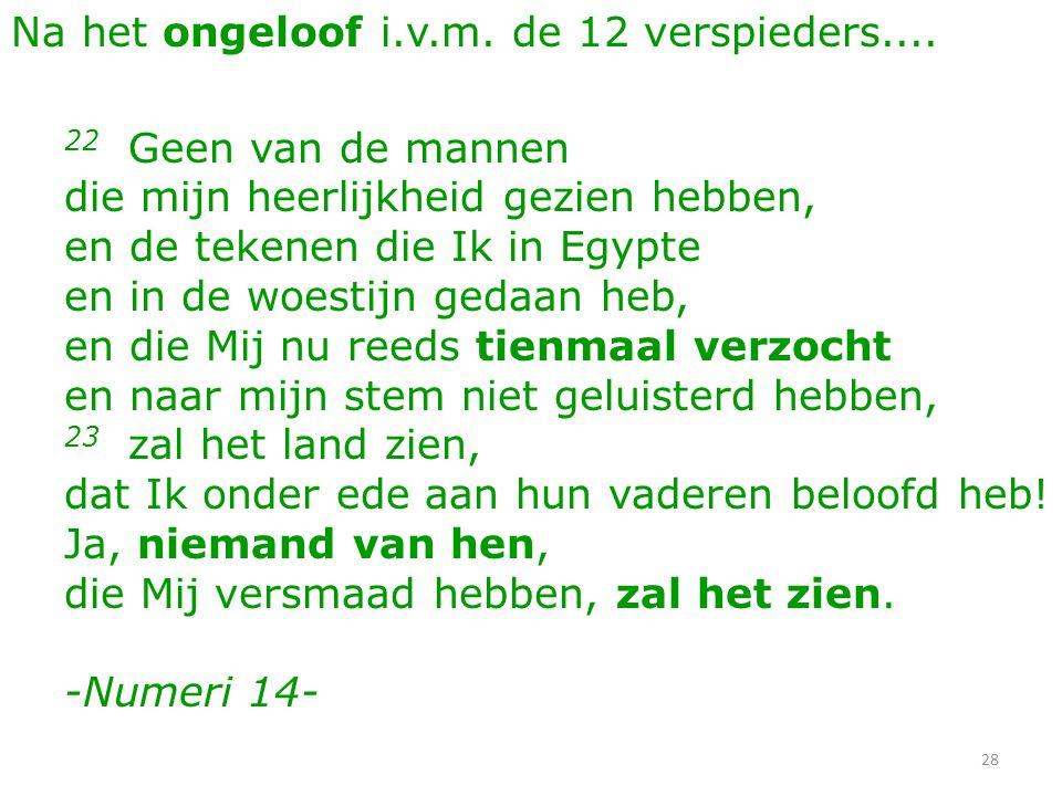 28 Na het ongeloof i.v.m. de 12 verspieders.... 22 Geen van de mannen die mijn heerlijkheid gezien hebben, en de tekenen die Ik in Egypte en in de woe
