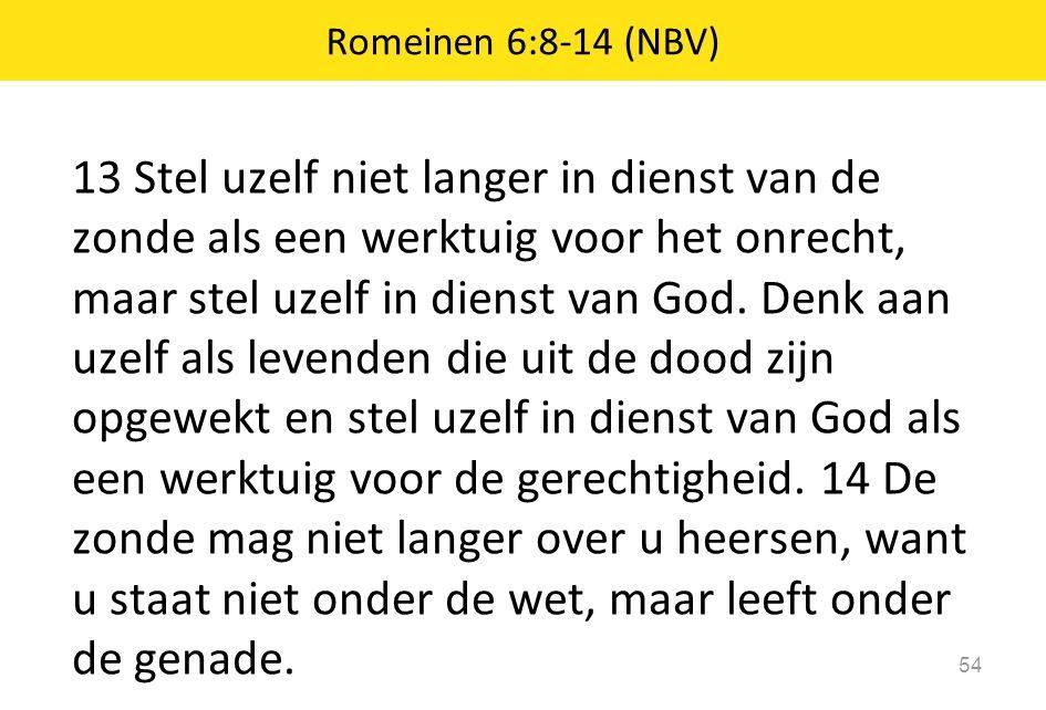 13 Stel uzelf niet langer in dienst van de zonde als een werktuig voor het onrecht, maar stel uzelf in dienst van God. Denk aan uzelf als levenden die