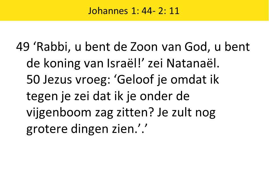 49 'Rabbi, u bent de Zoon van God, u bent de koning van Israël!' zei Natanaël. 50 Jezus vroeg: 'Geloof je omdat ik tegen je zei dat ik je onder de vij