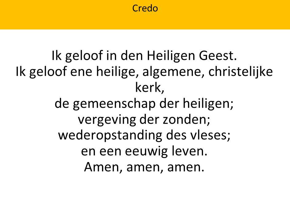 Credo Ik geloof in den Heiligen Geest. Ik geloof ene heilige, algemene, christelijke kerk, de gemeenschap der heiligen; vergeving der zonden; wederops