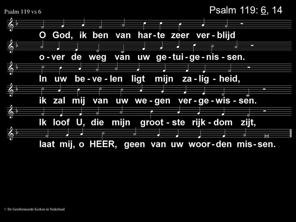 Psalm 119: 6, 14