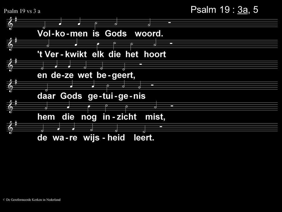 Psalm 19 : 3a, 5