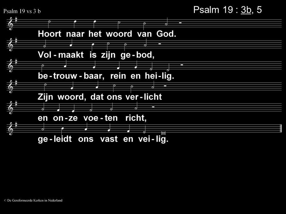 Psalm 19 : 3b, 5