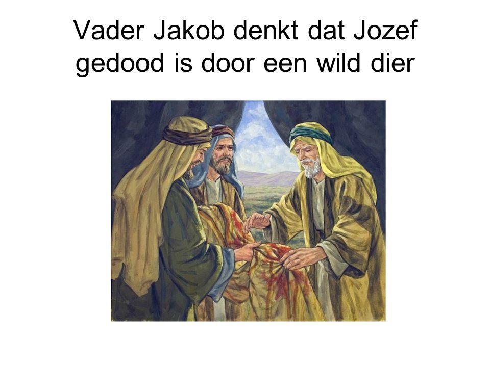 Vader Jakob denkt dat Jozef gedood is door een wild dier