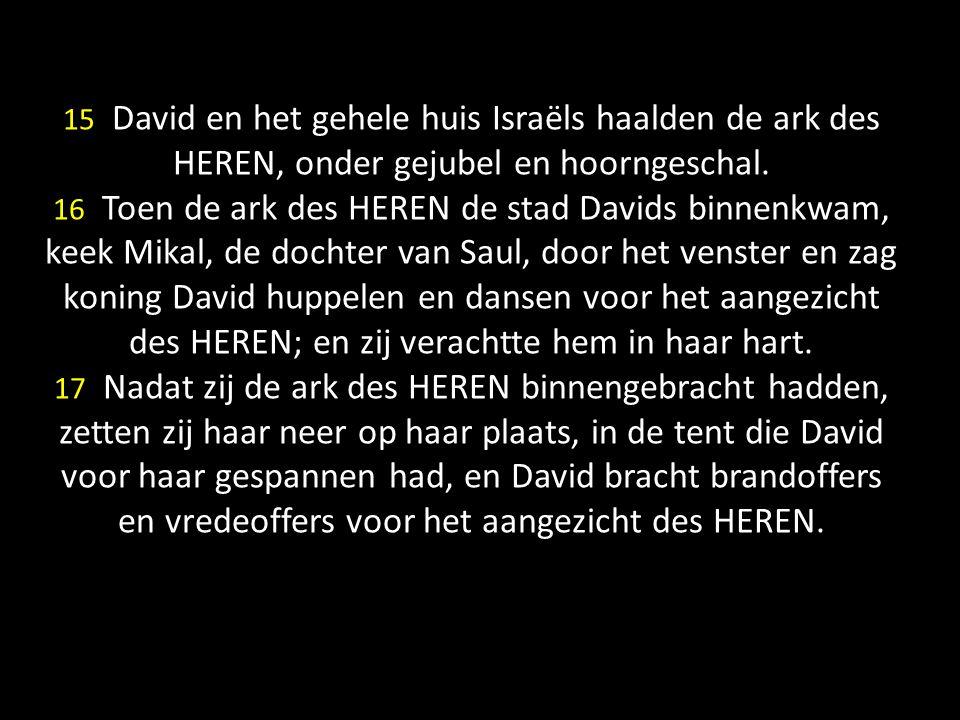 15 David en het gehele huis Israëls haalden de ark des HEREN, onder gejubel en hoorngeschal. 16 Toen de ark des HEREN de stad Davids binnenkwam, keek