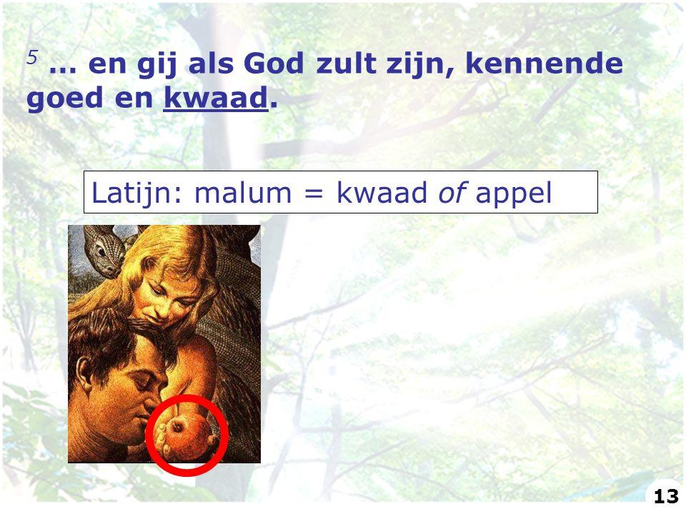 5 … en gij als God zult zijn, kennende goed en kwaad. Latijn: malum = kwaad of appel 13