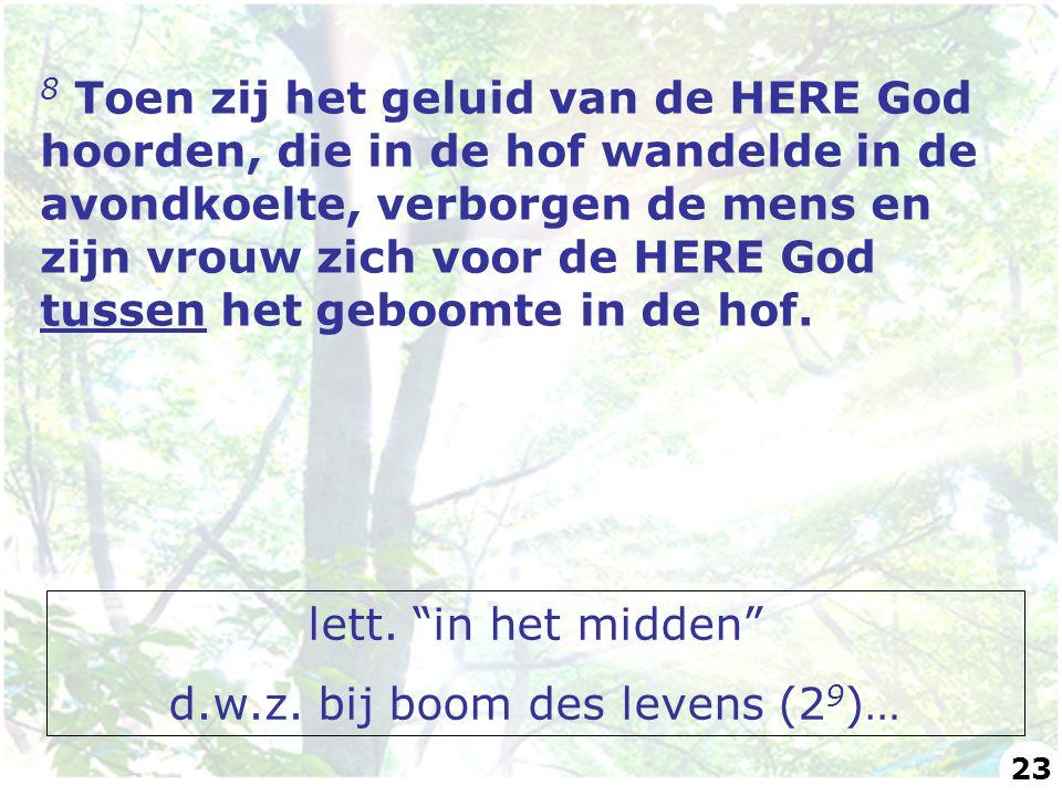 8 Toen zij het geluid van de HERE God hoorden, die in de hof wandelde in de avondkoelte, verborgen de mens en zijn vrouw zich voor de HERE God tussen