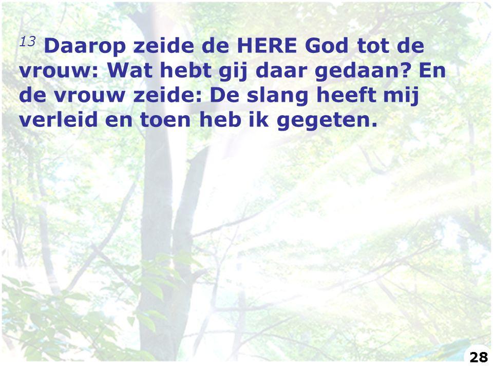 13 Daarop zeide de HERE God tot de vrouw: Wat hebt gij daar gedaan? En de vrouw zeide: De slang heeft mij verleid en toen heb ik gegeten. 28