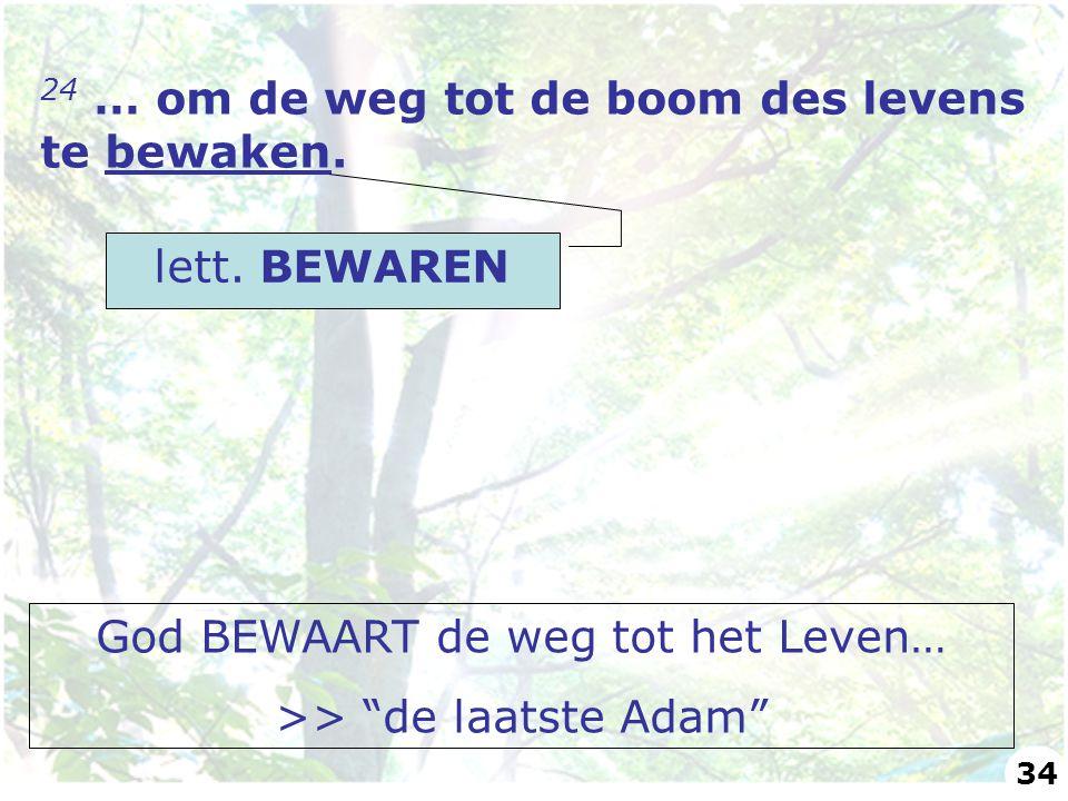 """24 … om de weg tot de boom des levens te bewaken. lett. BEWAREN God BEWAART de weg tot het Leven… >> """"de laatste Adam"""" 34"""