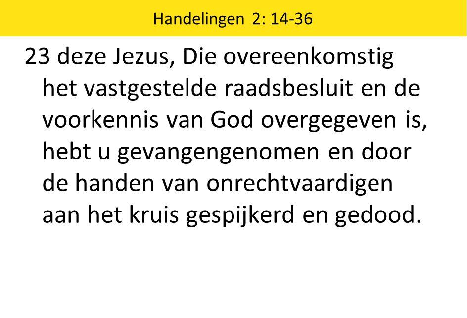 Handelingen 2: 14-36 23 deze Jezus, Die overeenkomstig het vastgestelde raadsbesluit en de voorkennis van God overgegeven is, hebt u gevangengenomen e