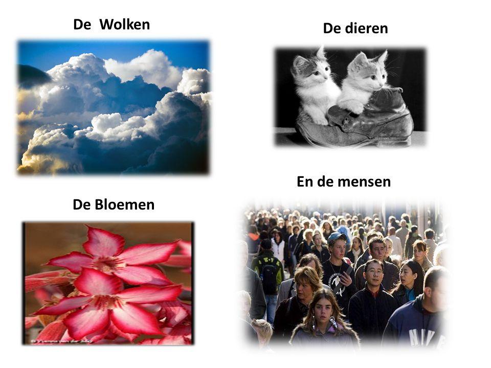 De Wolken De dieren De Bloemen En de mensen