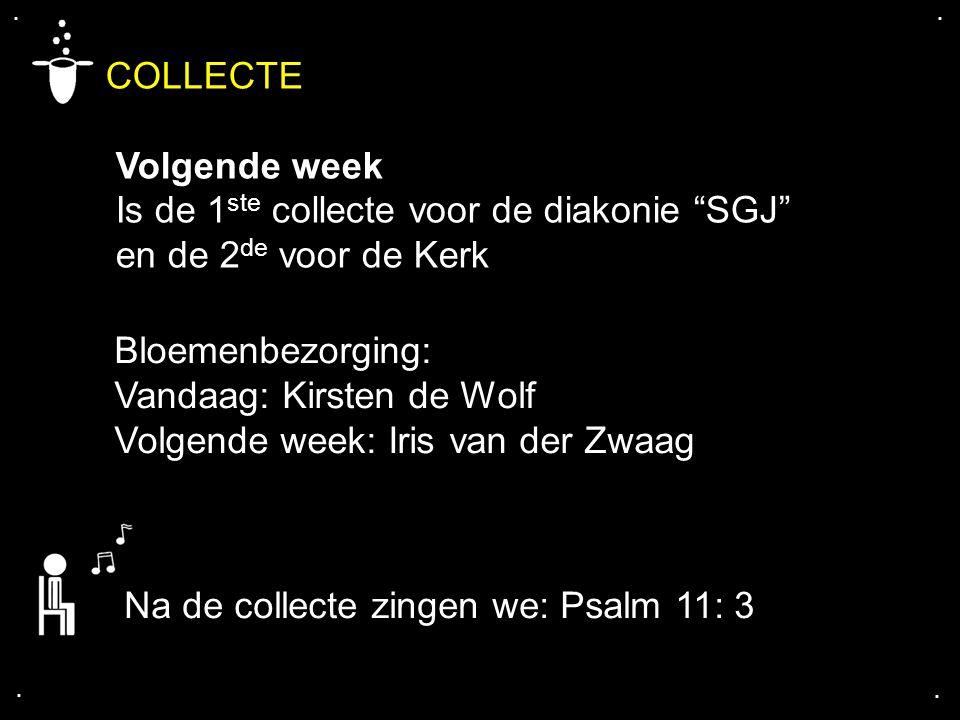 """.... COLLECTE Volgende week Is de 1 ste collecte voor de diakonie """"SGJ"""" en de 2 de voor de Kerk Bloemenbezorging: Vandaag: Kirsten de Wolf Volgende we"""