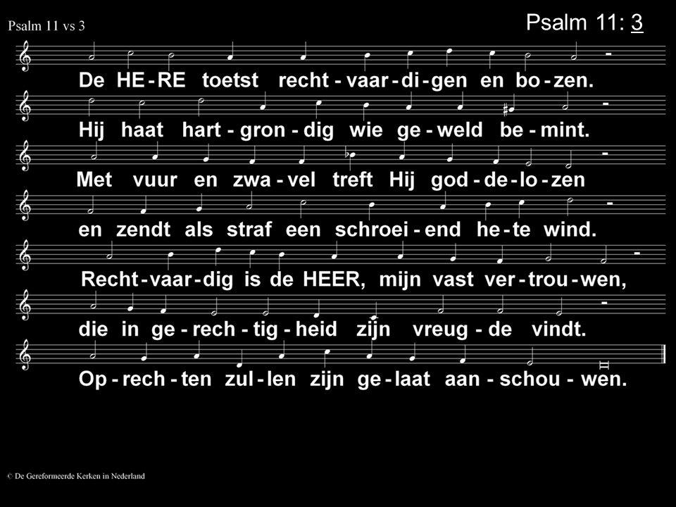 Psalm 11: 3