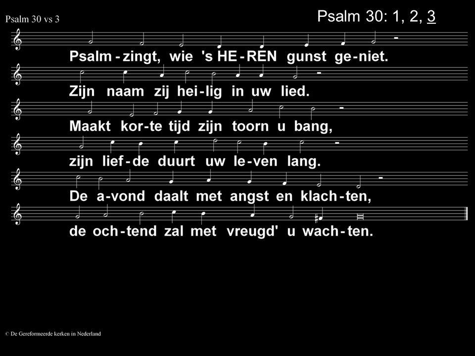 Het lijden van Jezus en het lijden van deze tijd K OMT ER OOIT EEN EINDE AAN HET LIJDEN .