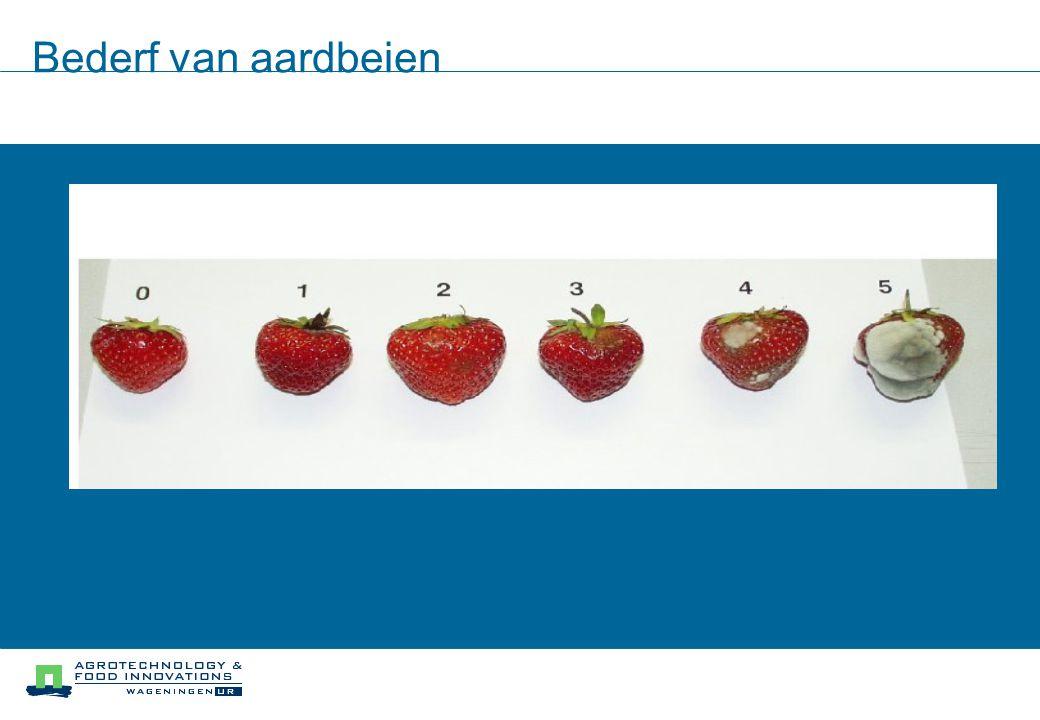 Bederf van aardbeien