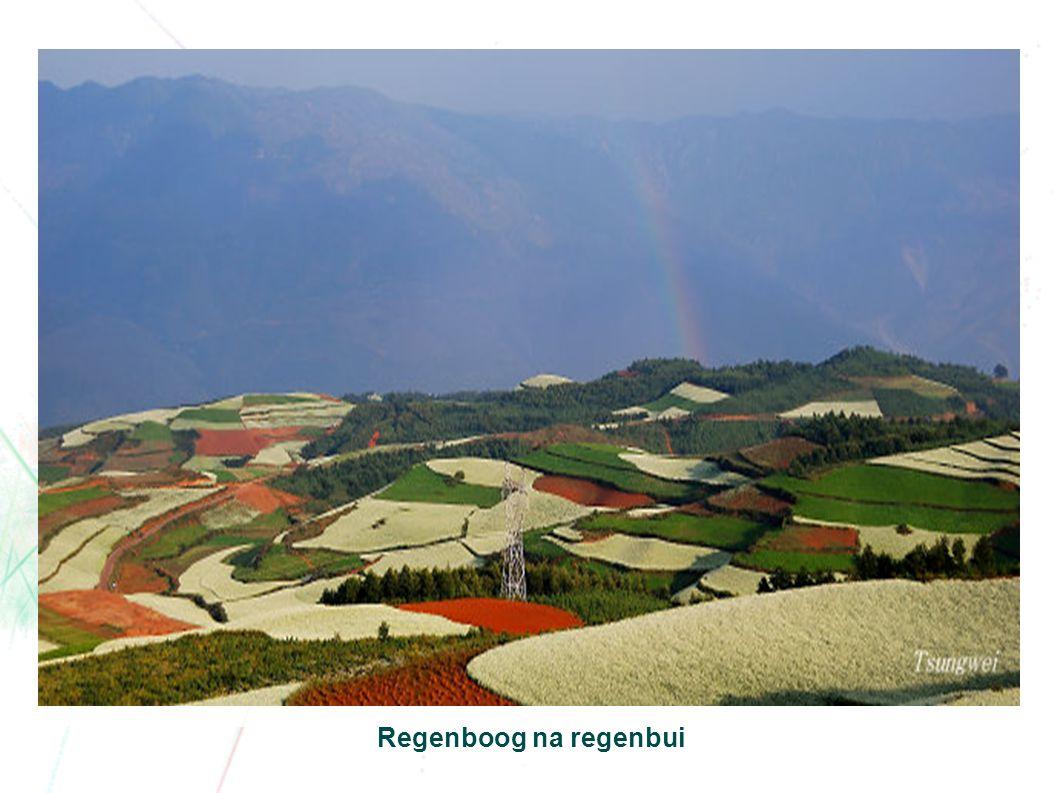 Regenboog na regenbui