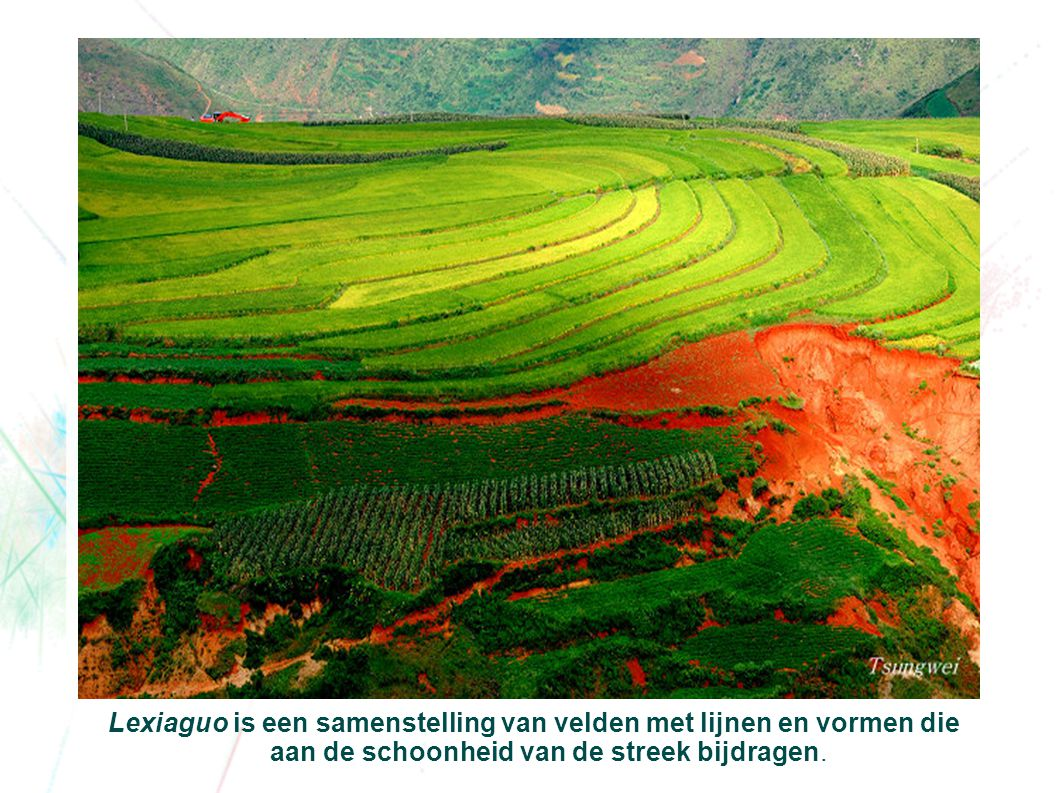 Lexiaguo is een samenstelling van velden met lijnen en vormen die aan de schoonheid van de streek bijdragen.