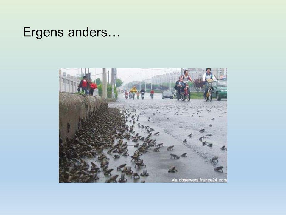 Netten Oude zandgroeve