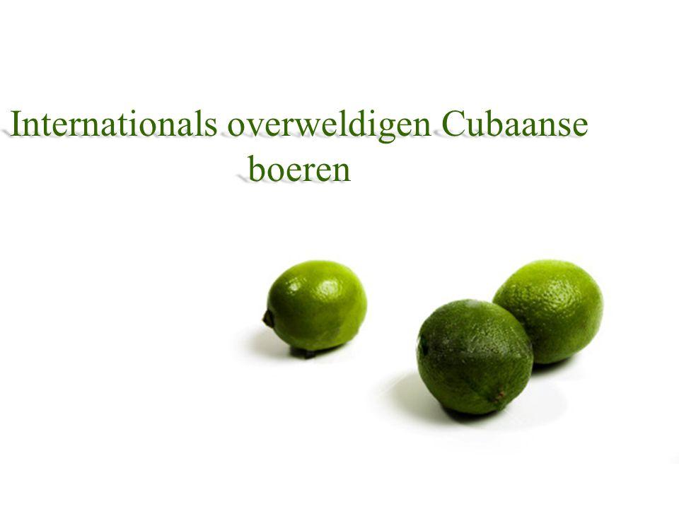 Internationals overweldigen Cubaanse boeren