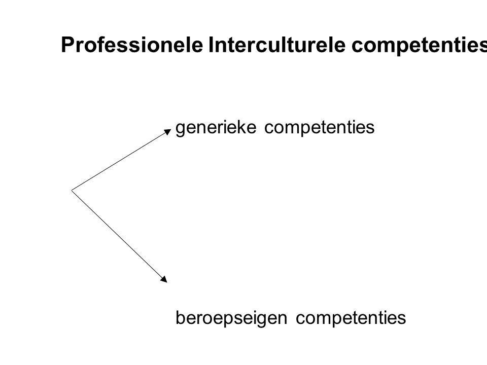 Generieke competenties a)Breed observeren en contextgericht werken b)Empatisch en reflexief interageren c)Flexibiliteit d)Communicatieve vaardigheden (code switchen) e)Competenties benoemen en erkennen f)Samen projecten maken
