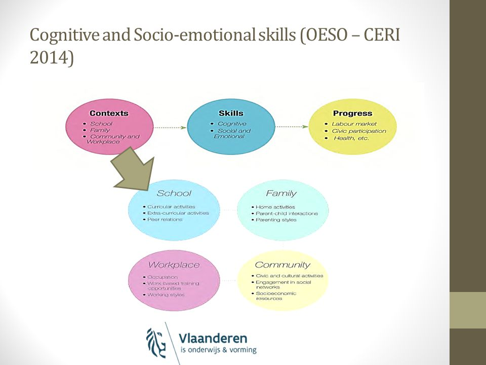 Cognitive and Socio-emotional skills (OESO – CERI 2014)