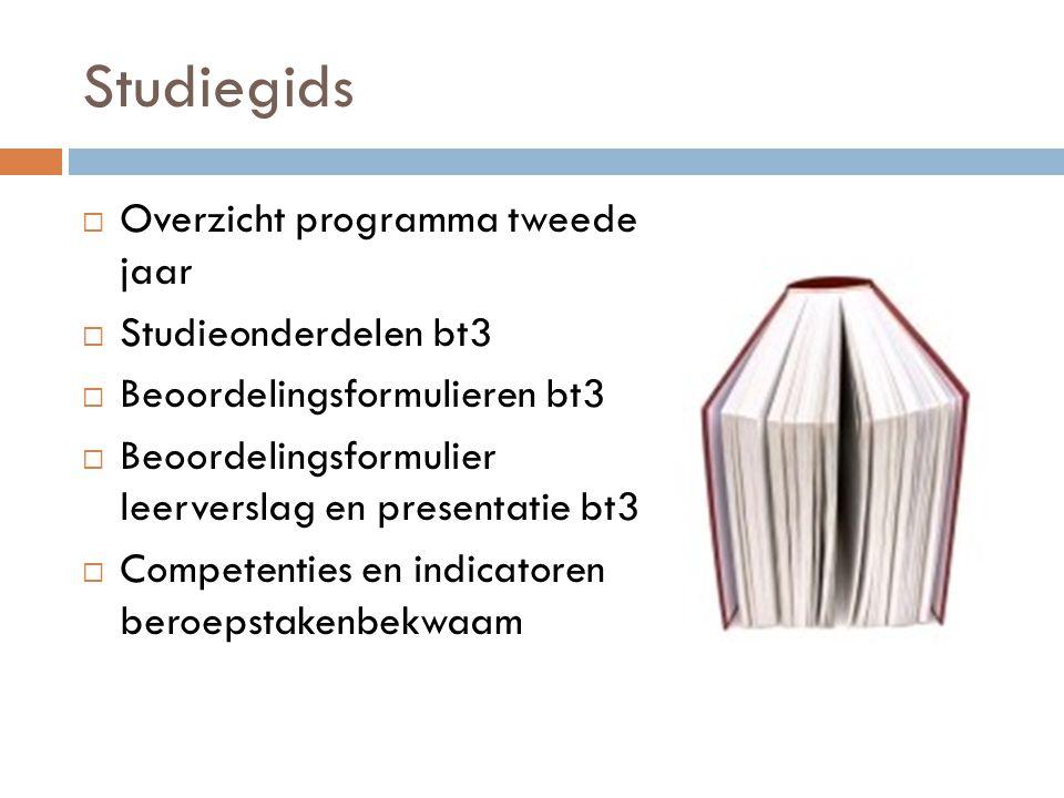 Studiegids  Overzicht programma tweede jaar  Studieonderdelen bt3  Beoordelingsformulieren bt3  Beoordelingsformulier leerverslag en presentatie b