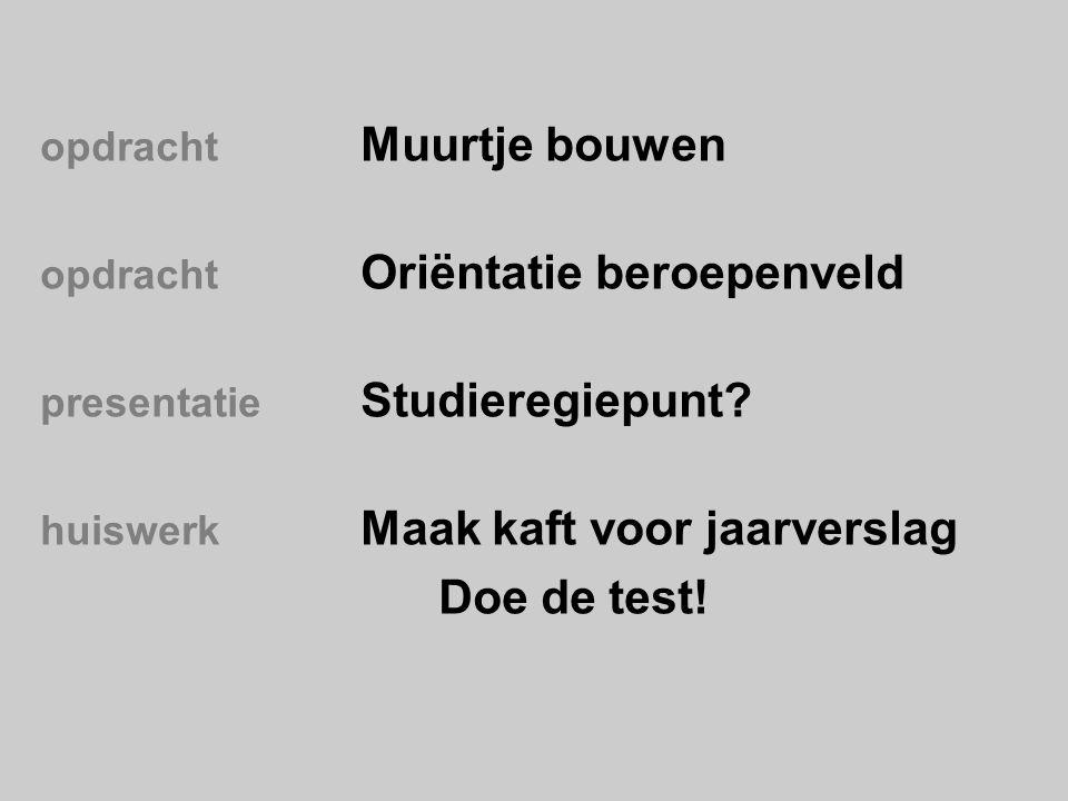opdracht Muurtje bouwen opdracht Oriëntatie beroepenveld presentatie Studieregiepunt.