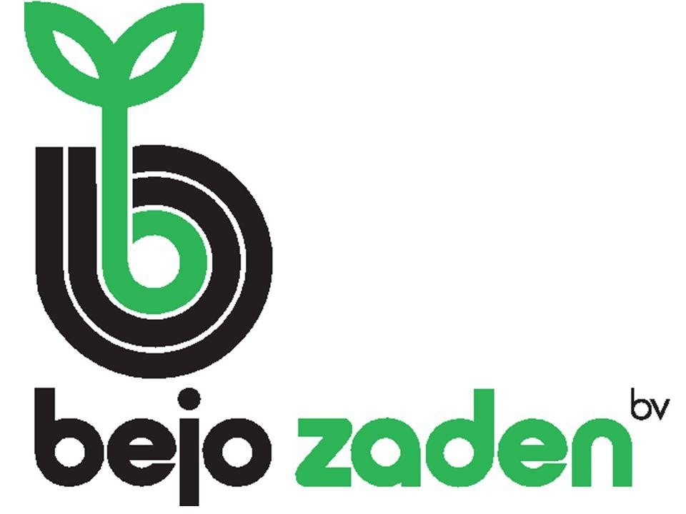 Een échte specialist in de veredeling, productie en verkoop van groentezaden.