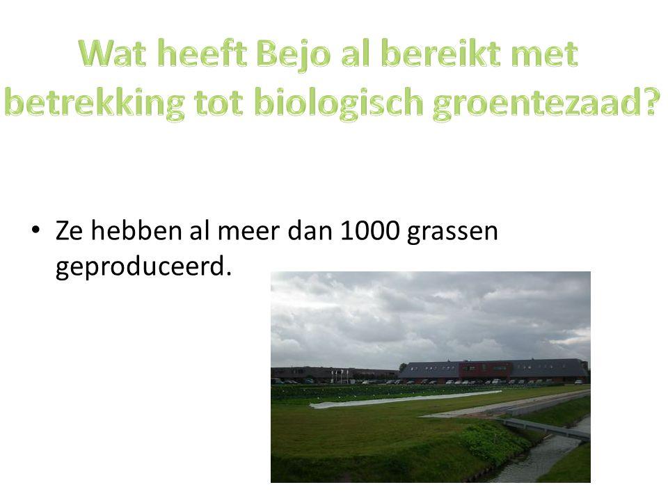 Ze hebben al meer dan 1000 grassen geproduceerd.