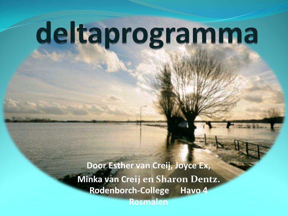 Door Esther van Creij, Joyce Ex, Minka van Creij en Sharon Dentz. Rodenborch-College Havo 4 Rosmalen