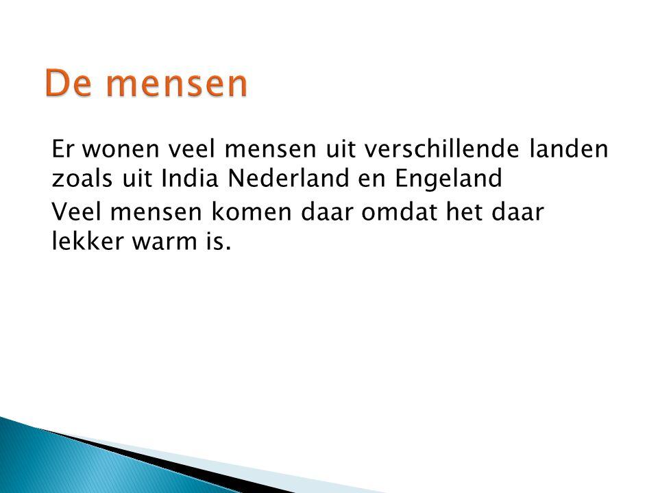 Er wonen veel mensen uit verschillende landen zoals uit India Nederland en Engeland Veel mensen komen daar omdat het daar lekker warm is.