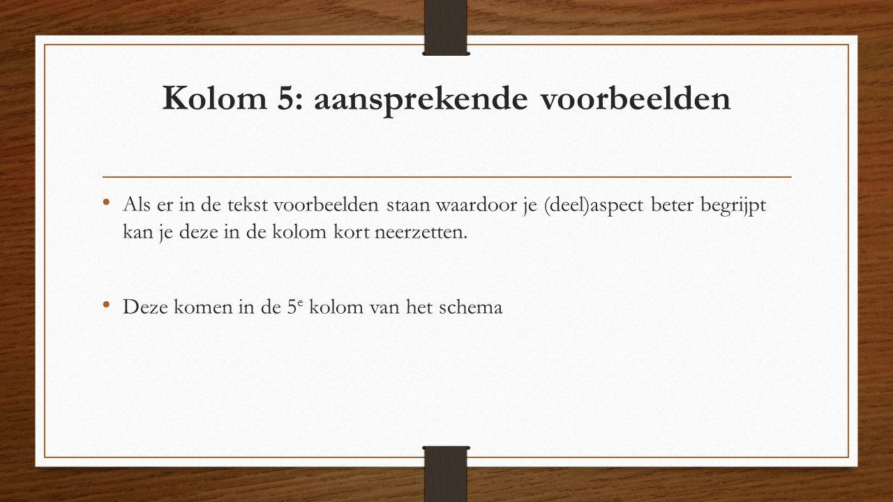 Kolom 5: aansprekende voorbeelden Als er in de tekst voorbeelden staan waardoor je (deel)aspect beter begrijpt kan je deze in de kolom kort neerzetten