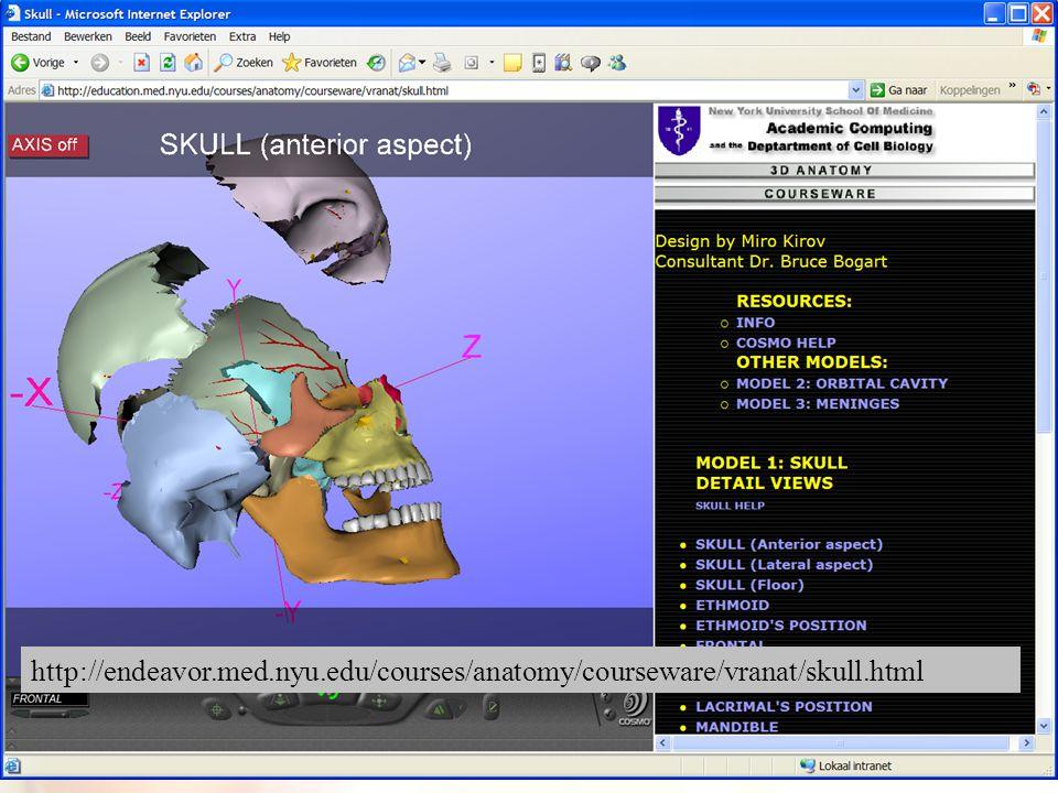 22 http://endeavor.med.nyu.edu/courses/anatomy/courseware/vranat/skull.html