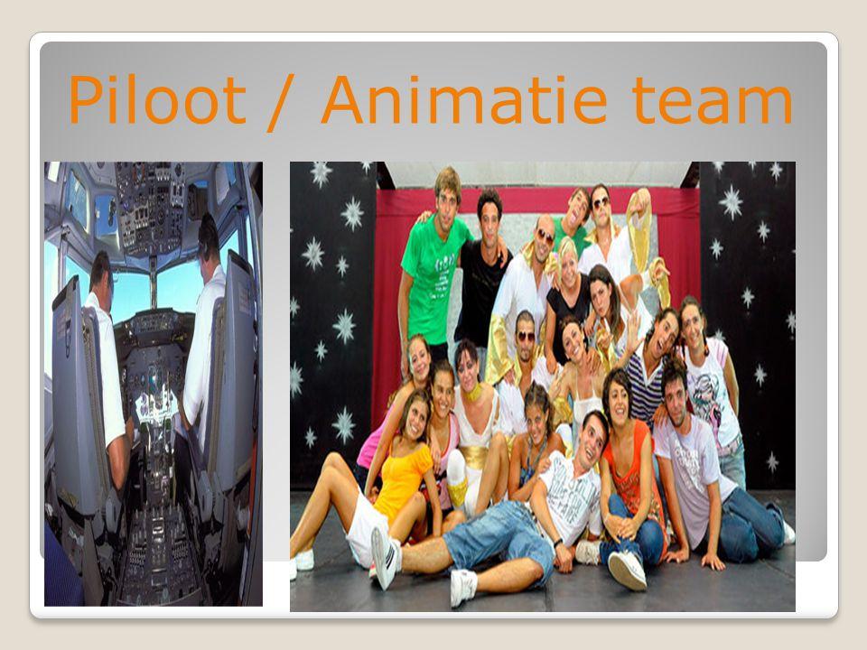 Piloot / Animatie team