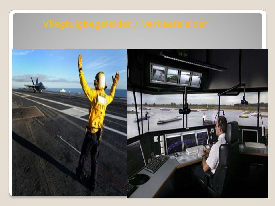 Vliegtuigbegeleider / Verkeersleider