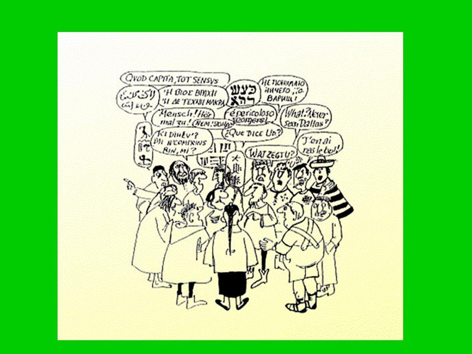 -een leerstofblok bestaat uit 15 lessen rondom een bepaald thema -In elk blok zijn er 6 leerkrachtgebonden lessen (uitleglessen) in het gele boek -Daarnaast zijn er 'zelfstandig werken'- lessen: het groene werkboek en blauwe opdrachtenboek -De 12 e les is een toetsles (oranje toetsboek) -Afhankelijk van toets volgt extra instructie of verrijking (rode boek)