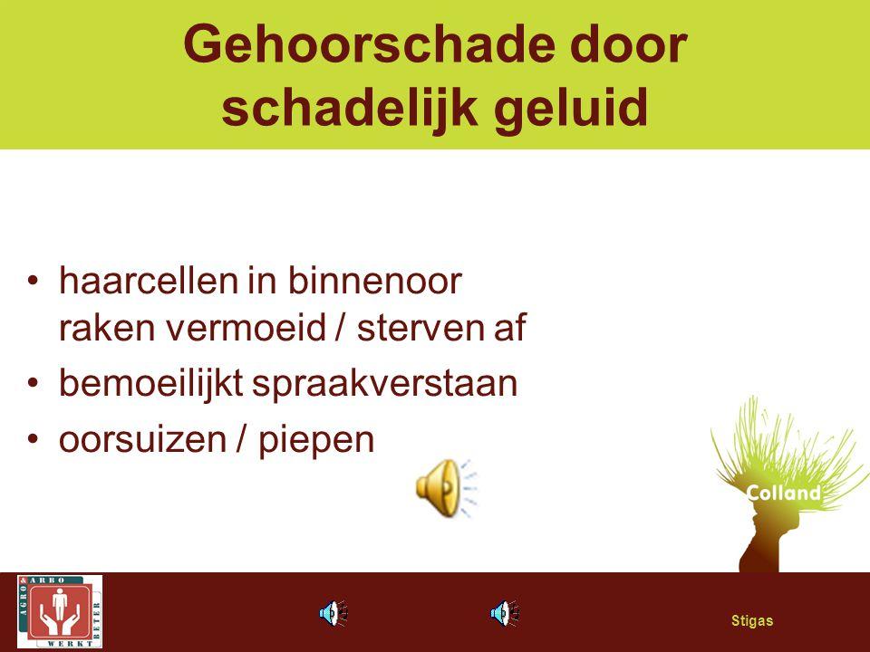 Stigas Gehoorschade door schadelijk geluid haarcellen in binnenoor raken vermoeid / sterven af bemoeilijkt spraakverstaan oorsuizen / piepen
