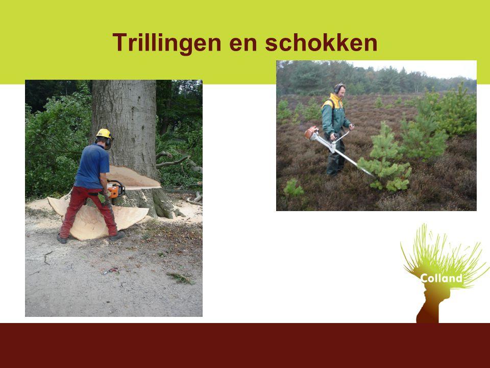 Stigas 9 december 2004 De komst van Colland Ketenaanpak agrarisch Trillingen en schokken