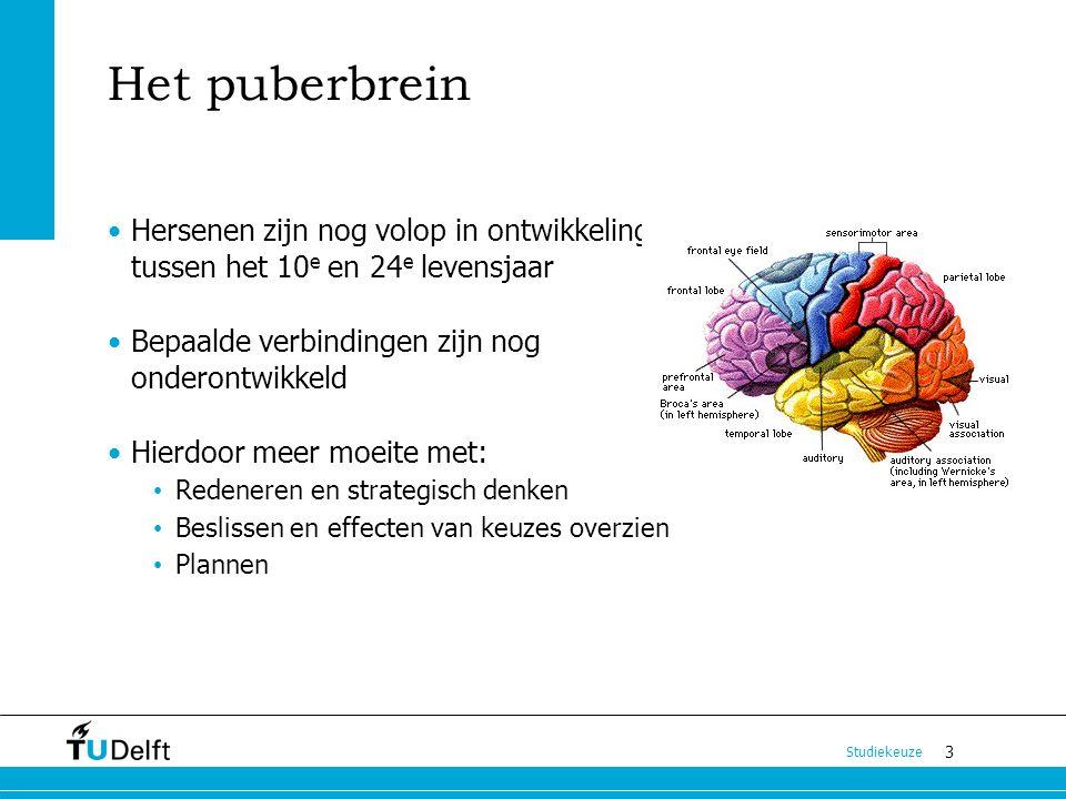 3 Studiekeuze Het puberbrein Hersenen zijn nog volop in ontwikkeling tussen het 10 e en 24 e levensjaar Bepaalde verbindingen zijn nog onderontwikkeld
