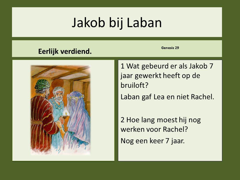 .. Jakob bij Laban Eerlijk verdiend. Genesis 29 1 Wat gebeurd er als Jakob 7 jaar gewerkt heeft op de bruiloft? Laban gaf Lea en niet Rachel. 2 Hoe la