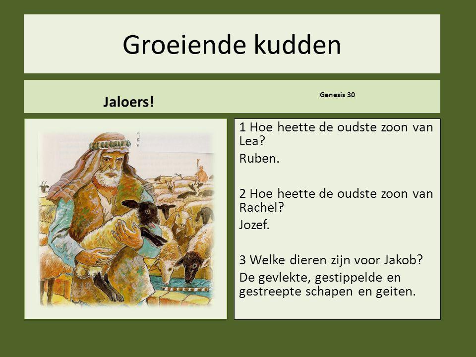 ..Groeiende kudden Jaloers. Genesis 30 1 Hoe heette de oudste zoon van Lea.