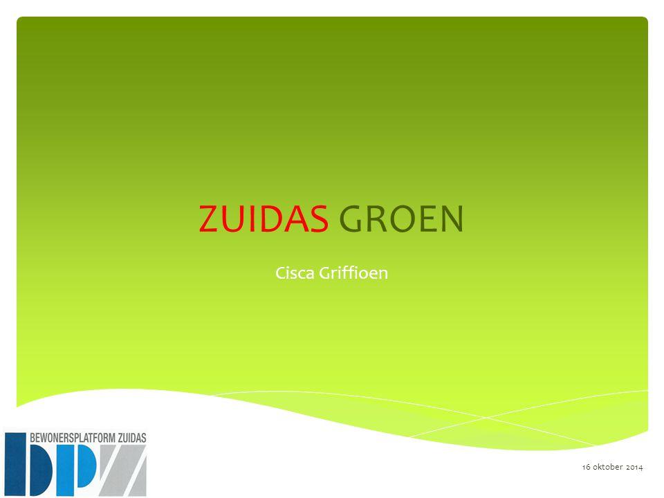  Op 7 januari 1998 heeft de Gemeenteraad Amsterdam het Masterplan Zuidas vastgesteld.